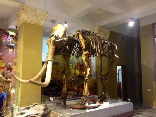 Archeology Museum Almaty