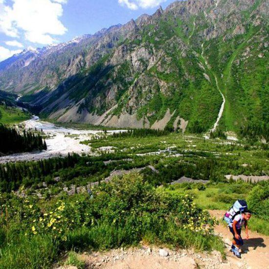 Boom Gorge Scenic View
