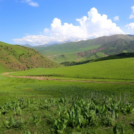 Chon-Kurchak Gorge Valley