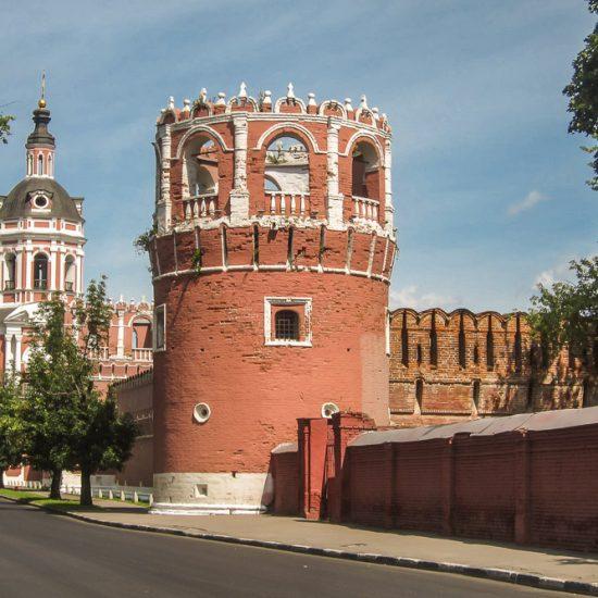 Donskoi Monastery fron View