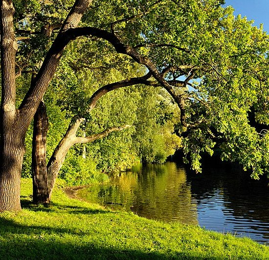 Kirov Central Park of Culture and Recreation River Bank