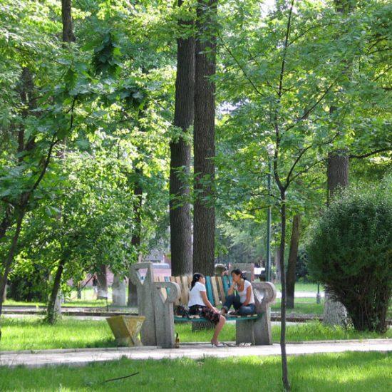 Oak Park People