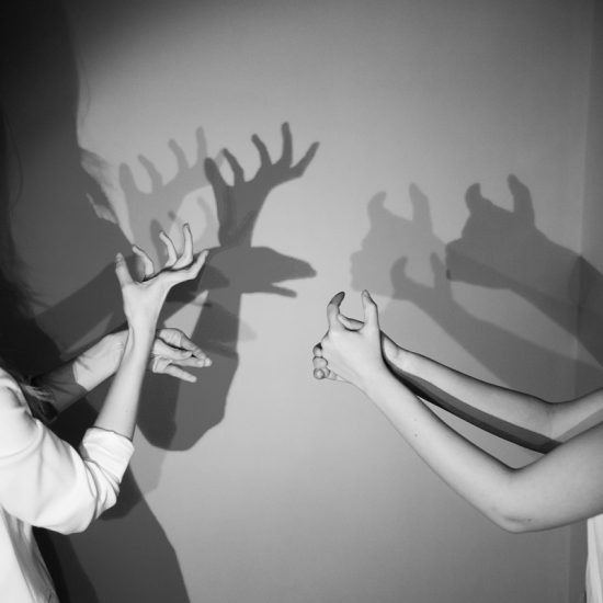The Shadow Museum - Hand Design