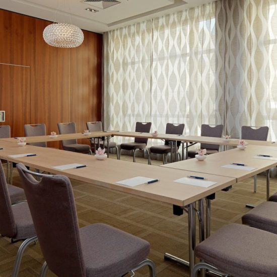 Vladimir - Meeting Hall