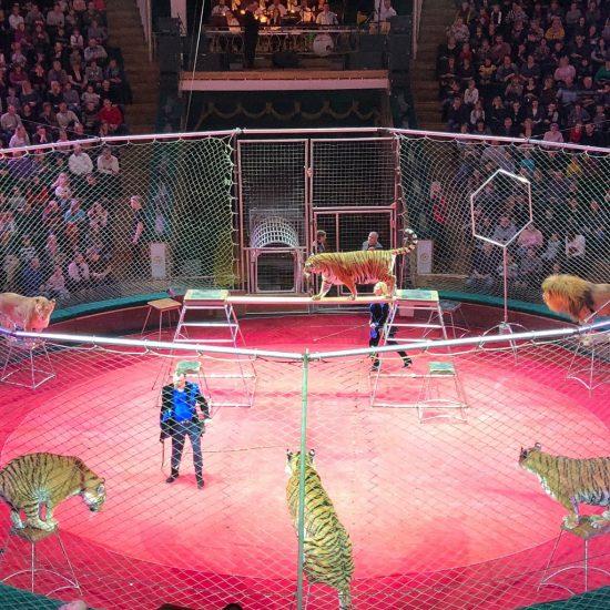 Belarusian State Circus